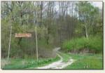 Grabowiec-Góra - wejście na wzgórze
