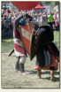 Iłża - knights tournament