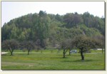 Janowiczki - wzgórze zamkowe