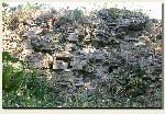 Kobiernice - relikty murów zamku
