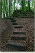 Ostrężnik - schody do zamku