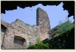 Podzamcze Piekoszowskie - mury