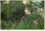 Rybnica Leśna - resztki murów