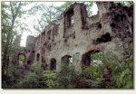 Rybnica - ruiny