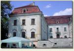 Sośnicowice - pałac, widok z tyłu