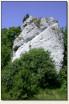 Suliszowice - skała z murami