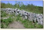 Wielka Wieś (Biały Kościół) - relikty murów