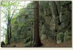 Wielkie Trzcińsko - skały