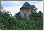 Witków - wieża z oddali