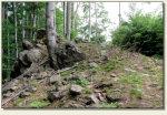 Wolibórz (Jodłownik, Góra Zamkowa) - szczyt Góry Zamkowej