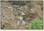 Wolibórz (Jodłownik, Góra Zamkowa) - kamienie zamkowe