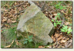 Wolibórz (Jodłownik, Góra Zamkowa) - kamień zamkowy