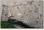 Wytrzyszczka - oryginalny mur
